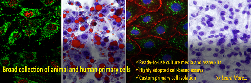 primary_cells.png